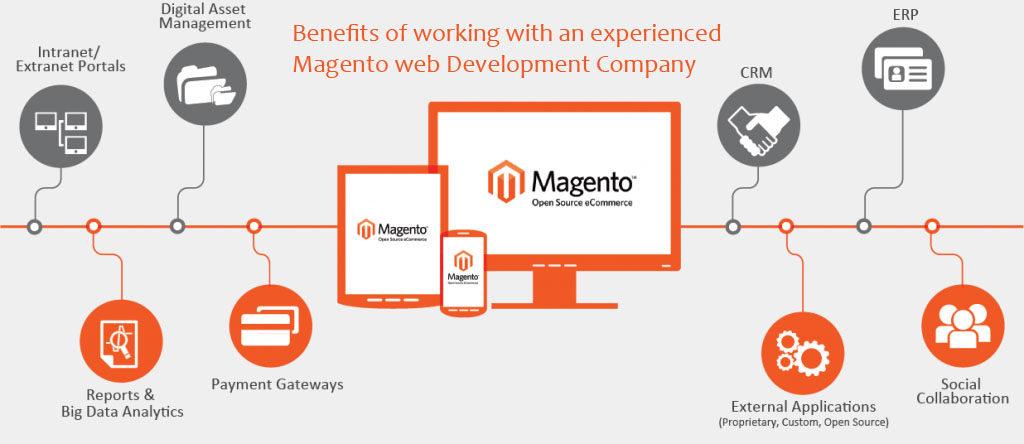 hire magento developer