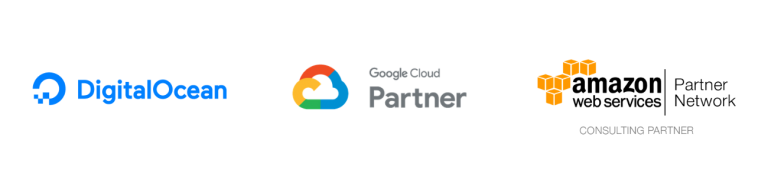 SG Partners wordpress hosting