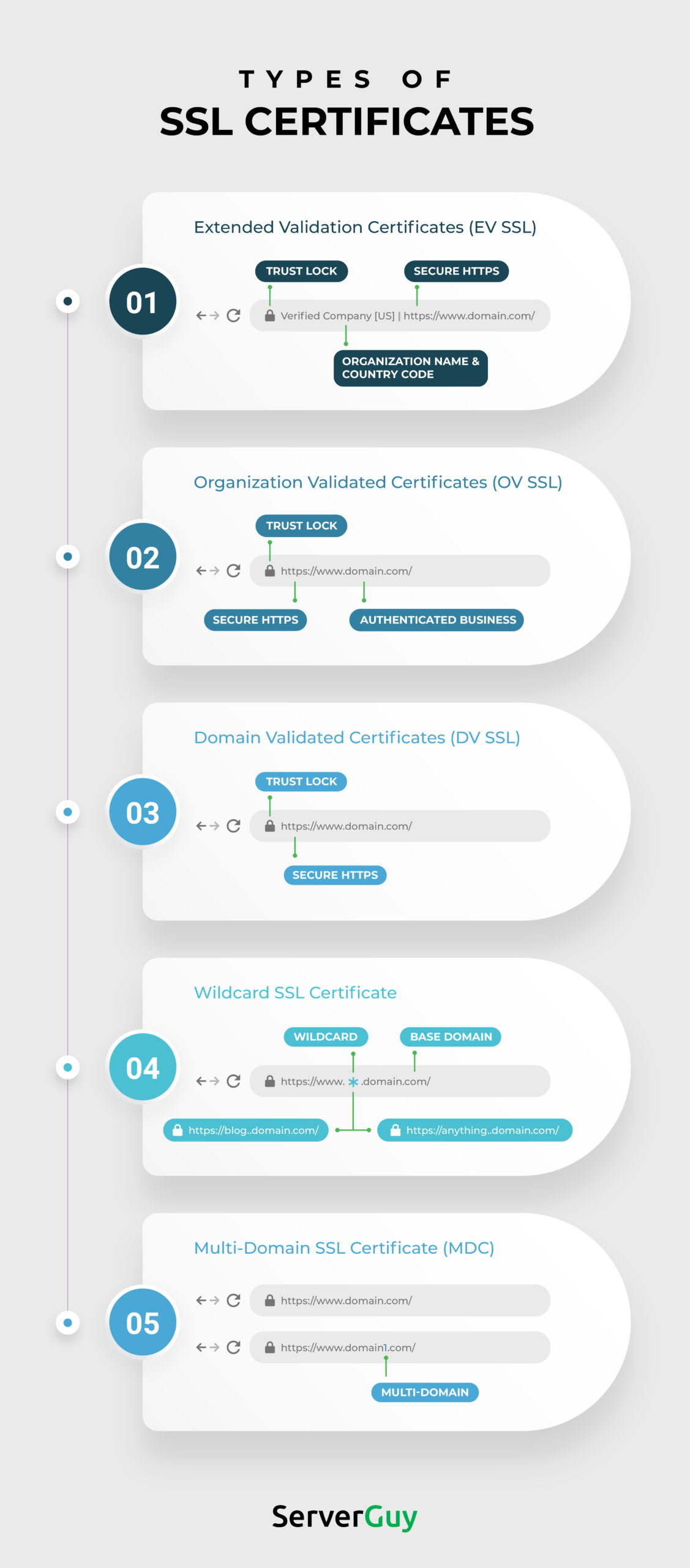 Types of SSL Certificates infographic