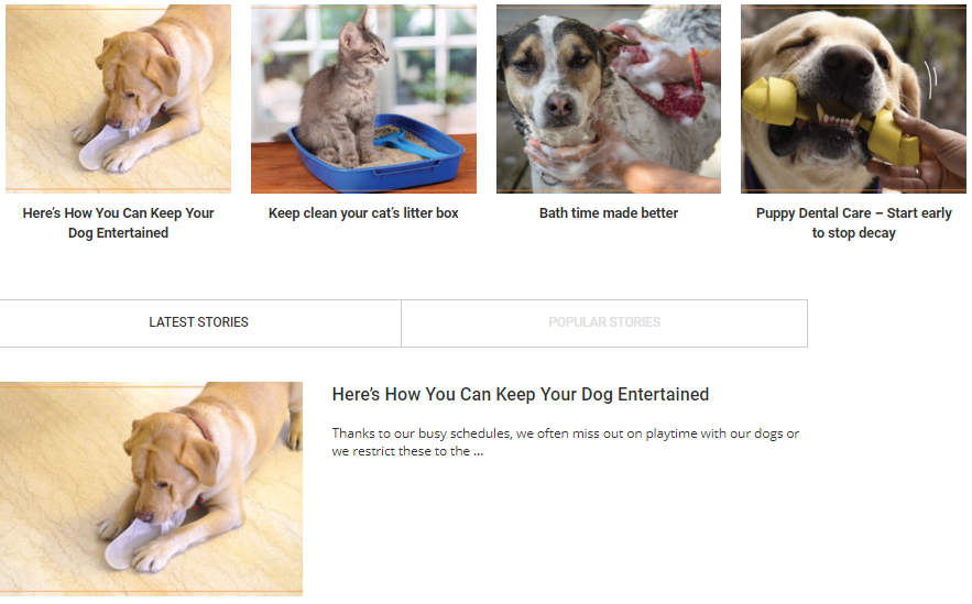 Dog Site Content Marketing