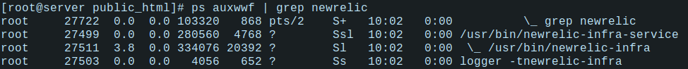 New Relic Installation on Linux