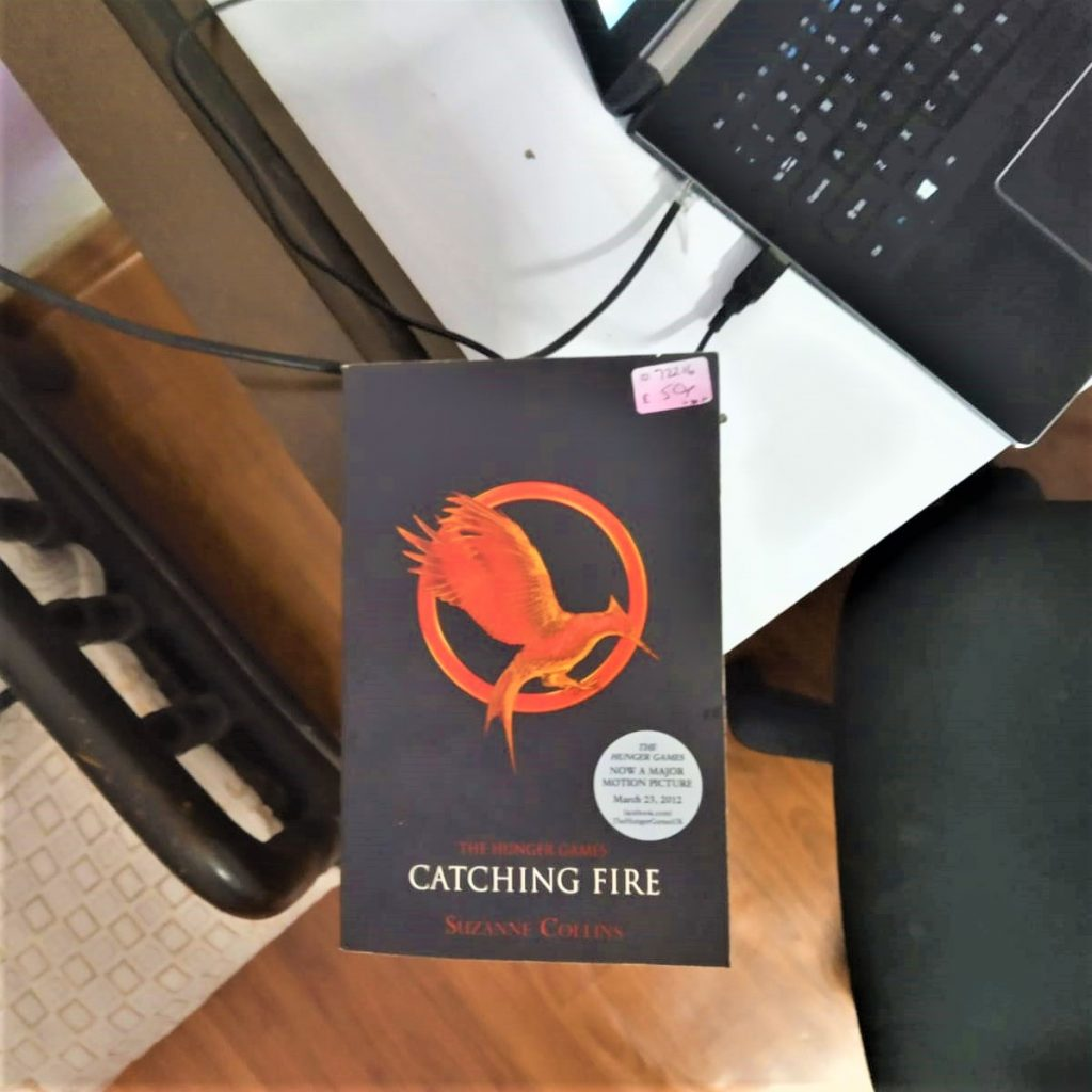 catching fire book on table - image seo tips