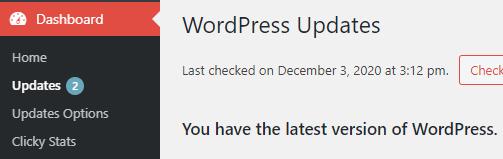 WordPress Updates from Dashboard
