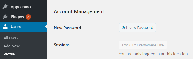 set new password WordPress Password Security